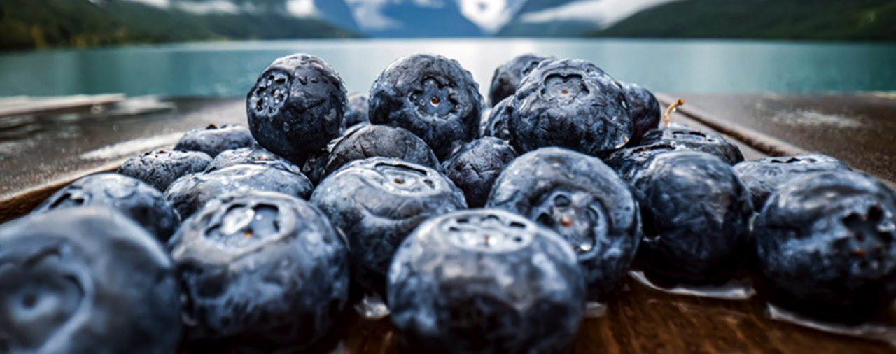 Anti-Oxidants Help Keep Free  Radicals in Check